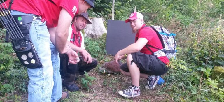 Ausflug zum 3D Bogenparcours in Wemding
